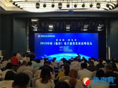 2018中国(临沂)电子商务发展高峰论坛举行