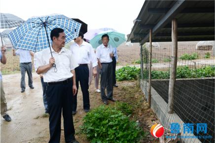 沂蒙环保世纪行走进莒南县 畜禽养殖污染、粉尘污染得到有效治�