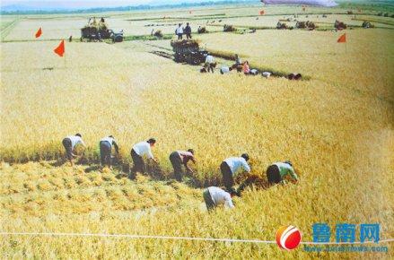 """40年农业巨变,临沂唱响""""希望的田野"""""""