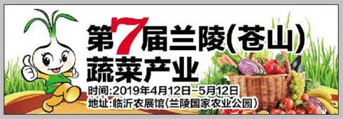 第七届兰陵菜博会4月12日开幕 10余项主题活动亮点纷呈