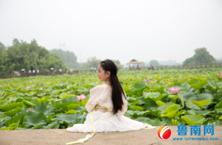 第二届中国临沂红荷节盛大开幕