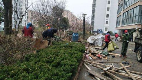 柳青街道开展13项创城活动 每天清理,楼道广告仍难绝迹