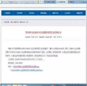 """儒房融科被认定为省级""""隐形冠军""""企业"""