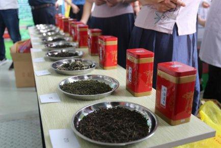 中国(临沂)首届《评茶员、茶艺师》邀请赛活动圆满结束!