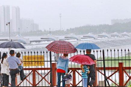 橡胶坝体溢流 临沂市民雨中游览沂河美景