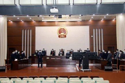 兰陵法院一审公开宣判被告人李某彪等24人恶势力集团犯罪案