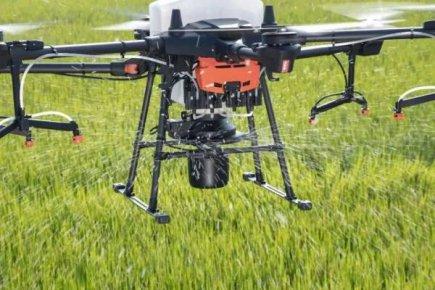 革命性好消息!种水稻无人机飞播不用插秧还能增产